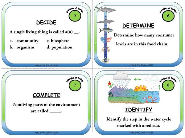 Principles of Ecology Page 04 - Task Cards - Principles of Ecology
