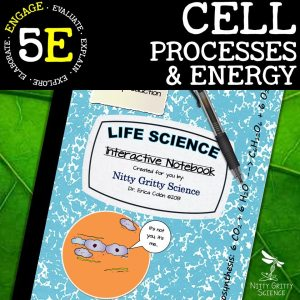 Slide8 1 - Cell Processes & Energy