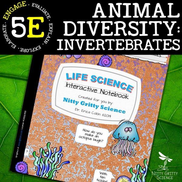 Slide9 1 - Animal Diversity – Invertebrates
