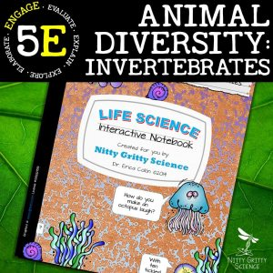 Slide9 1 - Animal Diversity – Invertebrates