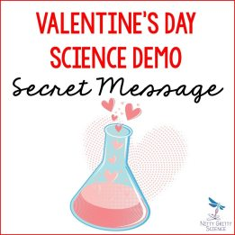Valentine's Day Demo - Secret Message