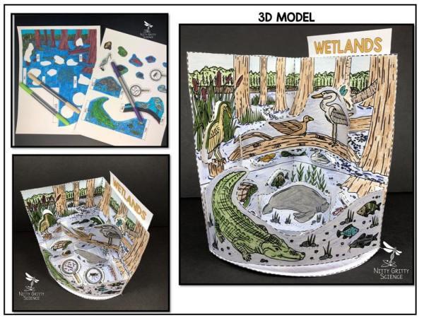 Wetlands Preview 1 - Wetland Biome Model - 3D Model - Biome Project