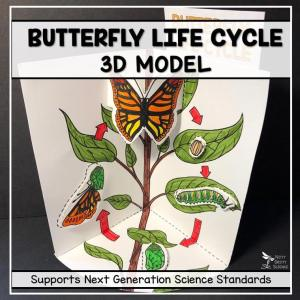 butterfly life cycle model 3d model featured image - Butterfly Life Cycle Model - 3D Model