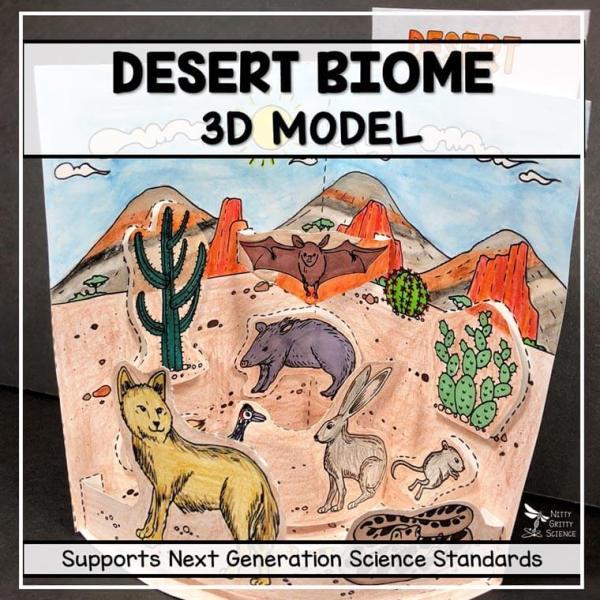 desert biome model 3d model biome project featured image - Desert Biome Model - 3D Model - Biome Project