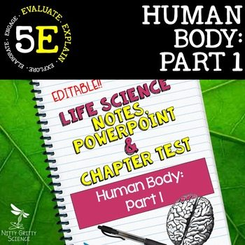 original 2399151 1 - Human Body - Part 1: Life Science Notes, PowerPoint & Test ~ EDITABLE