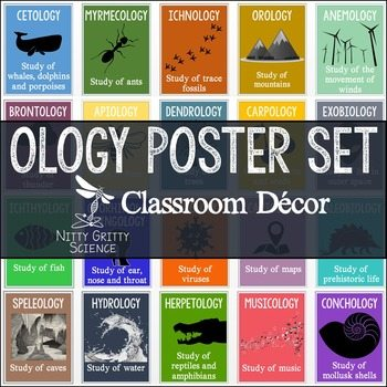 original 2804083 1 - Science Classroom Posters - OLOGY Poster Set