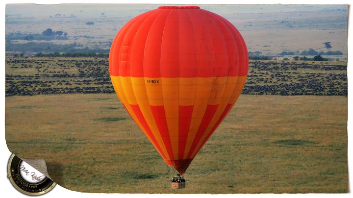SundayStills: B for Balloon
