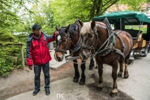 NK-EuroTrip-Day5-19