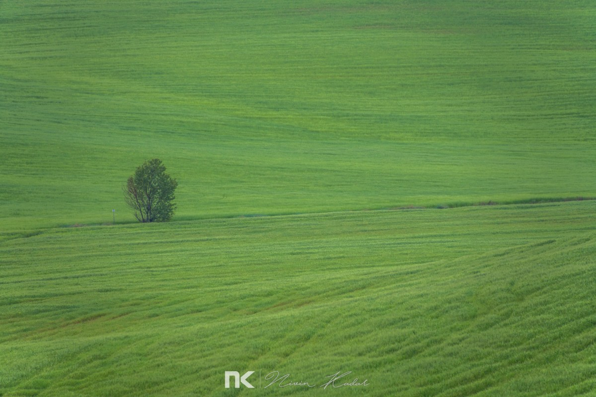 NK-EuroTrip-Day9-29
