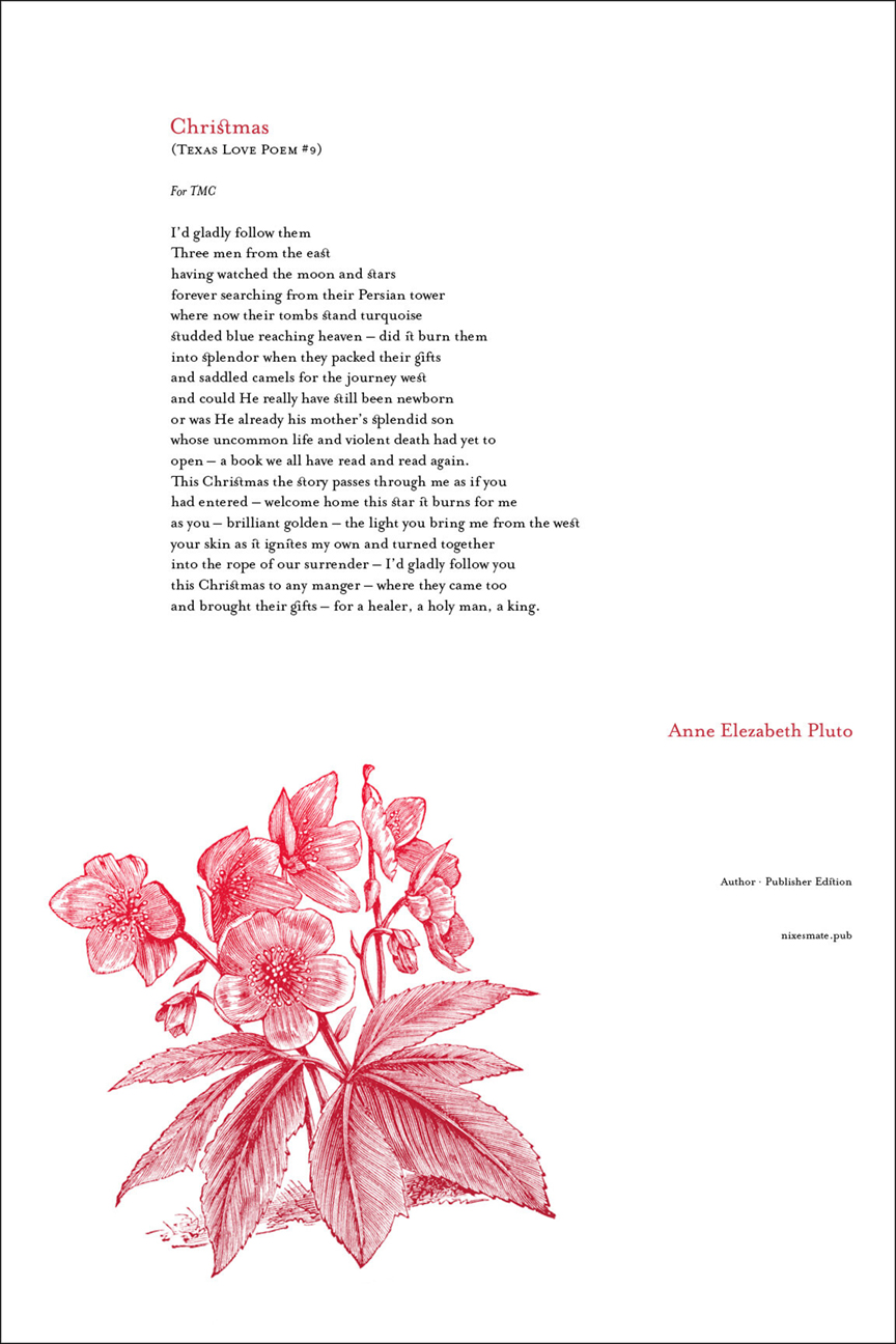 CHRISTMAS · ANNE ELEZABETH PLUTO