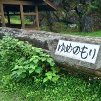 夢の森公園キャンプ場⇒よく整備された安心できる場所