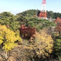 五台山 ⇒ 高知市の展望台。竹林寺、護国神社などみどころも満載(第31番札所)