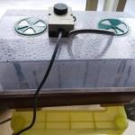 育苗器でのサツマイモ苗作り!管理は湿度だけで管理が簡単~
