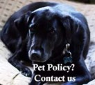 Check the Pet Policy here
