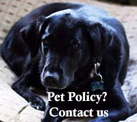 Condo Pet Policy