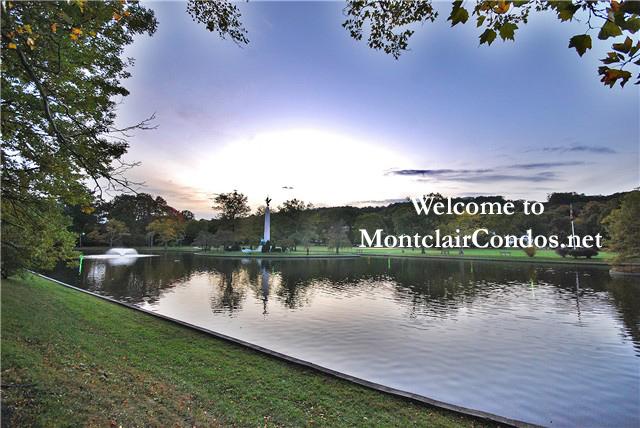 MontclairConds.net Logo