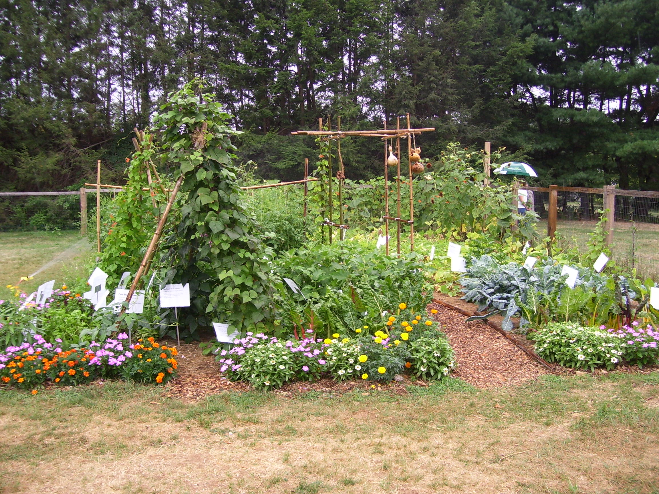 New Jersey Farm To School Network Wiki Spring School Garden Training New Brunswick