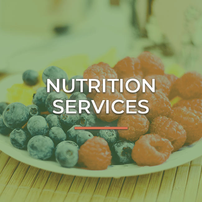 Nutrition-services-2