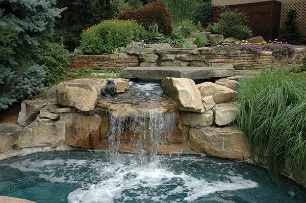 koi ponds and water gardens decorate