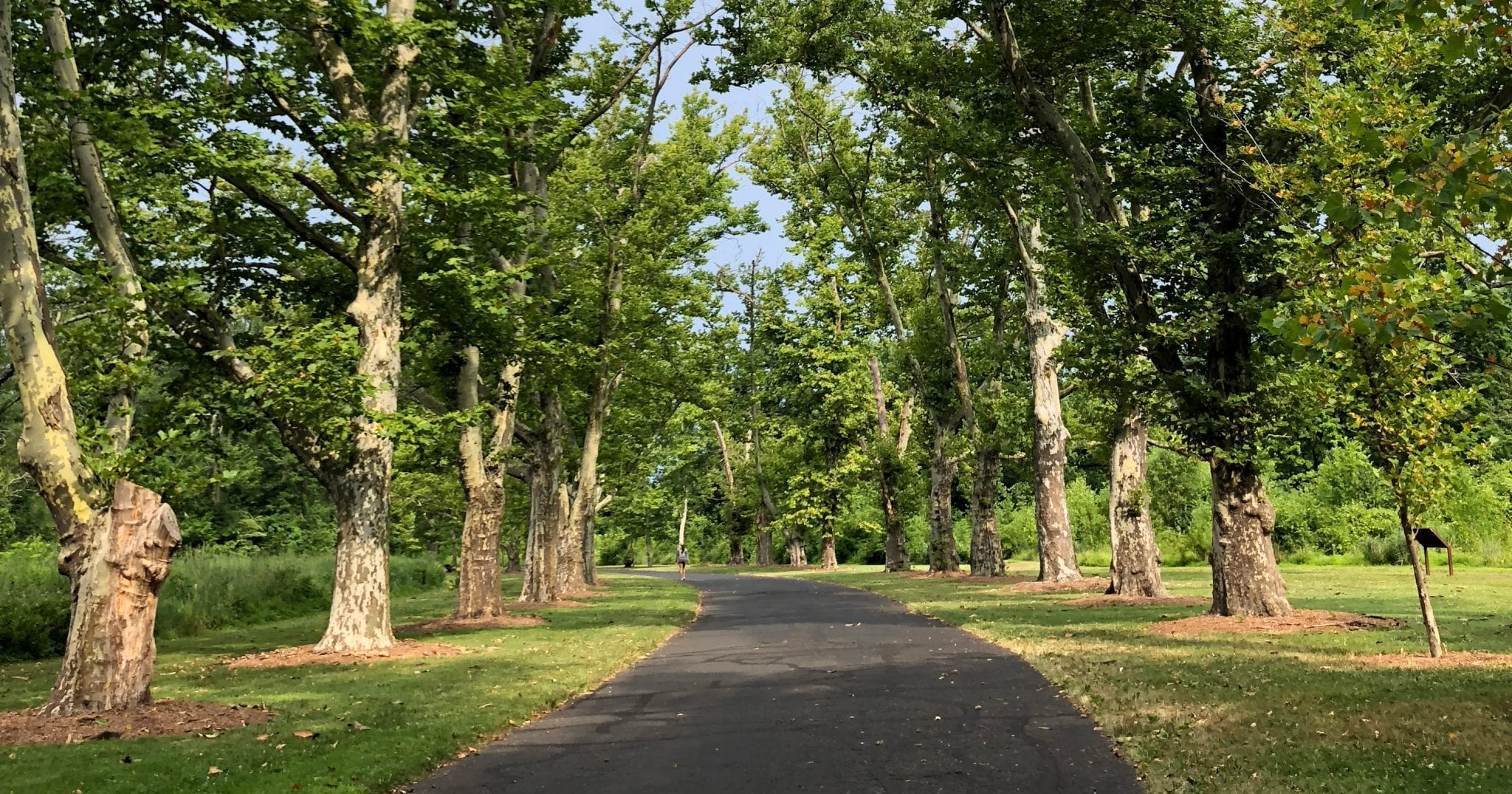 7 of the Best Gardens & Arboretums in the Garden State