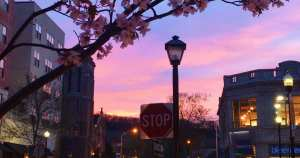 Read more about the article Downtown Dreaming in Montclair