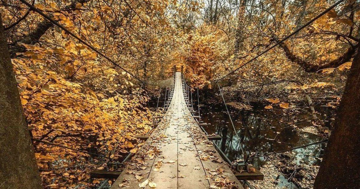 Visit Princeton's Infamous Suspension Bridge