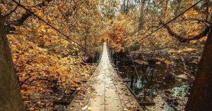 Read more about the article Visit Princeton's Infamous Suspension Bridge