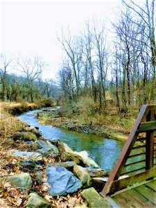 Bernadette Morales Nature Trails