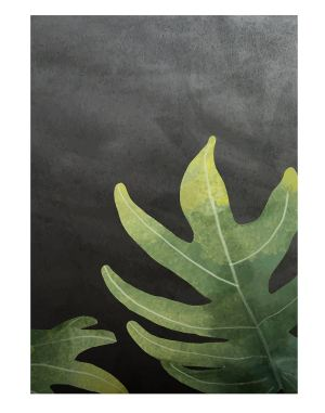 Philodendron-radiatum-leaf-welcome-board