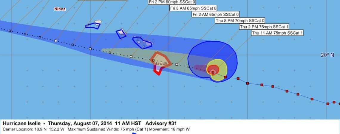Iselle#31 graphic