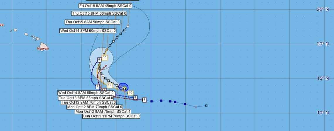 TS Nora Advisory Position#11
