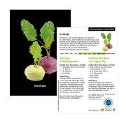 Rezeptkarten mit einfachen Rezepten und kurzen Infos