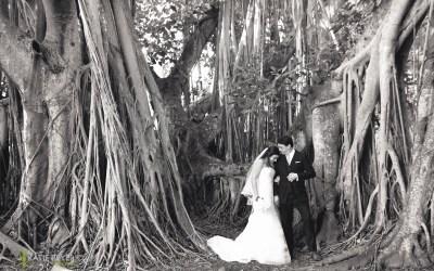 Michelle + Matt's Ringling Cà d'Zan Wedding