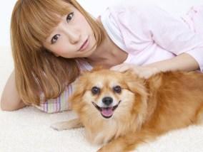 【保険】ペット保険について調べてみた