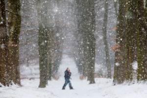 Sneeuw, sneeuwvlokjes, wandelaars in de sneeuw, bomen, winter, Landgoed Warnsbor