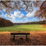 Herfst, bladeren, golden colours, zitbank, uitzicht, Arnhem