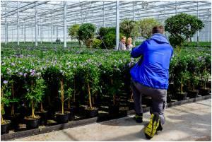 Kom in de Kas, open huis glastuinbouw Nederland