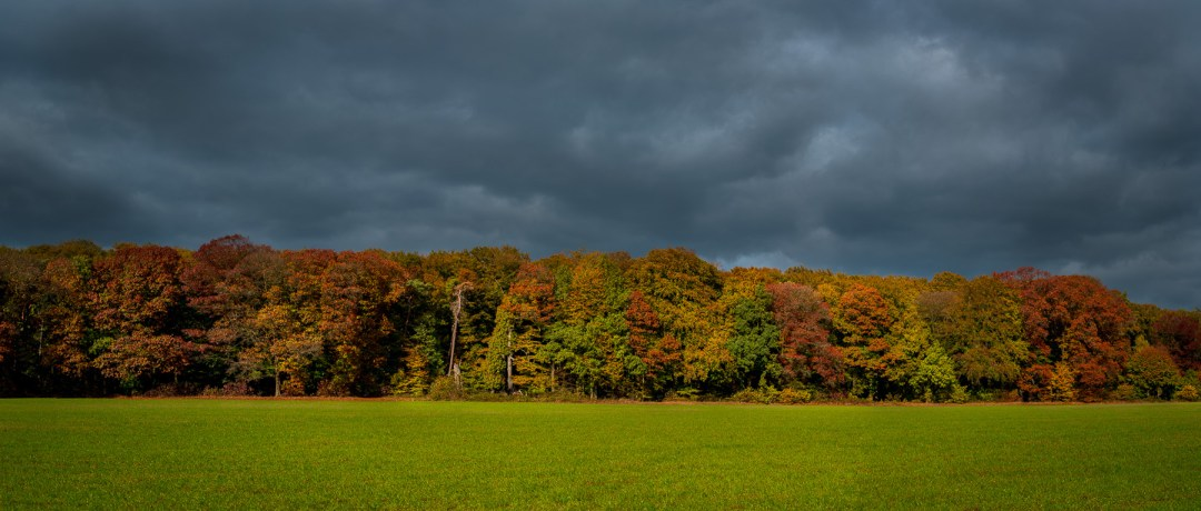 Zypendaal, Herfst, Oktober, nldazuu fotografeert, autumn, fall, herfst