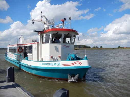 Ferry in Gorinchem