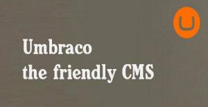 Umbraco Web Development Benefits for CMS Website