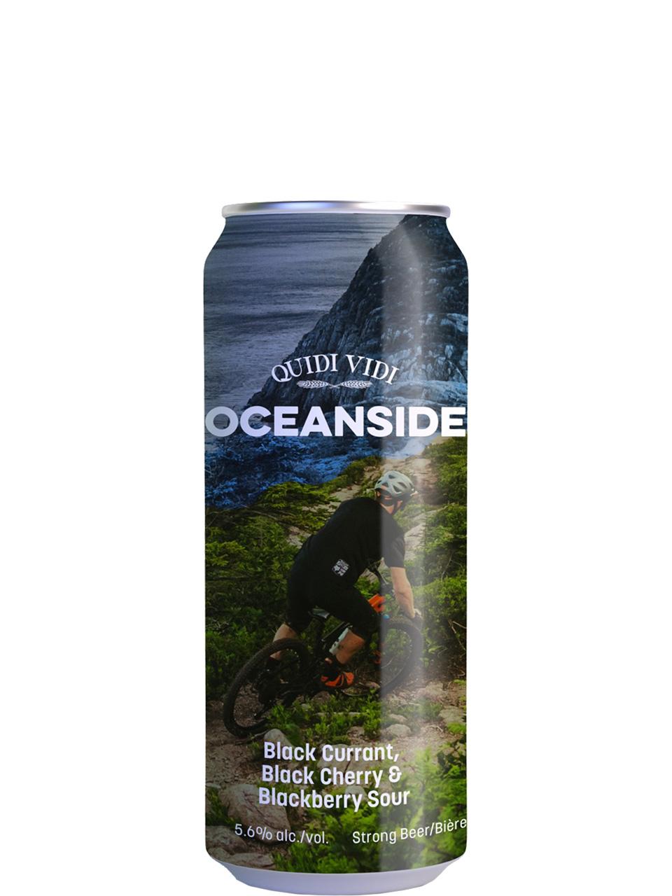 Quidi Vidi Oceanside Fruited Sour 473ml Can