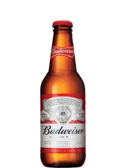 Budweiser Bottles 6pk