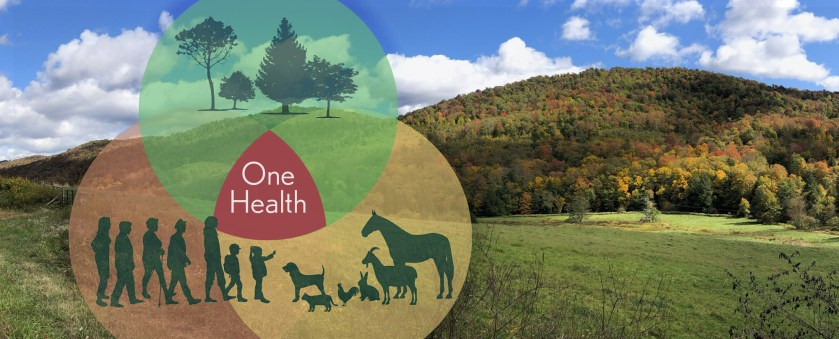 One Health diagram showing people, animals and plants. Mountain with Fall leaves in the background.