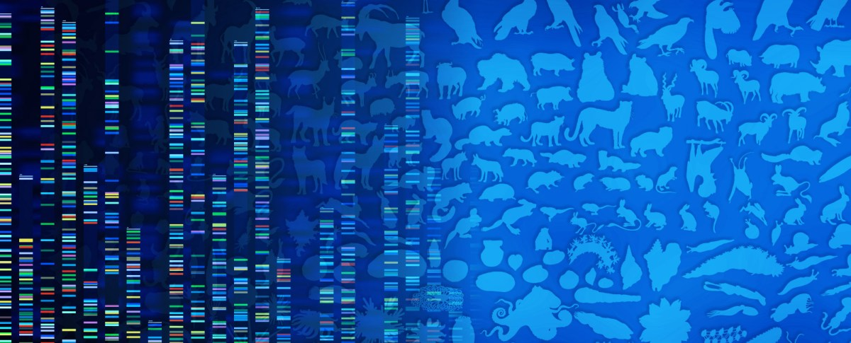 Using Comparative Genomics to Advance Scientific Discoveries