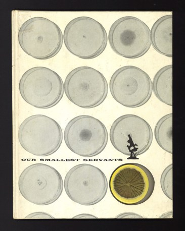 The cover of Our Smallest Servants illustrated with molds growing in Petri dishes and a microscope.