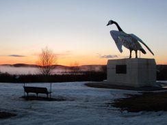 Wawa Goose at Suset Northern Lights Motel