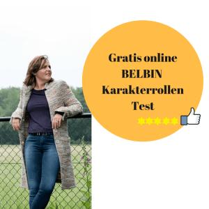 Nu Gratis online Belbin karalterrollen test Marijn Dane