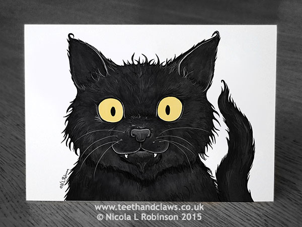 Cat illustration © Nicola L Robinson All rights reserved www.teethandclaws.co.uk