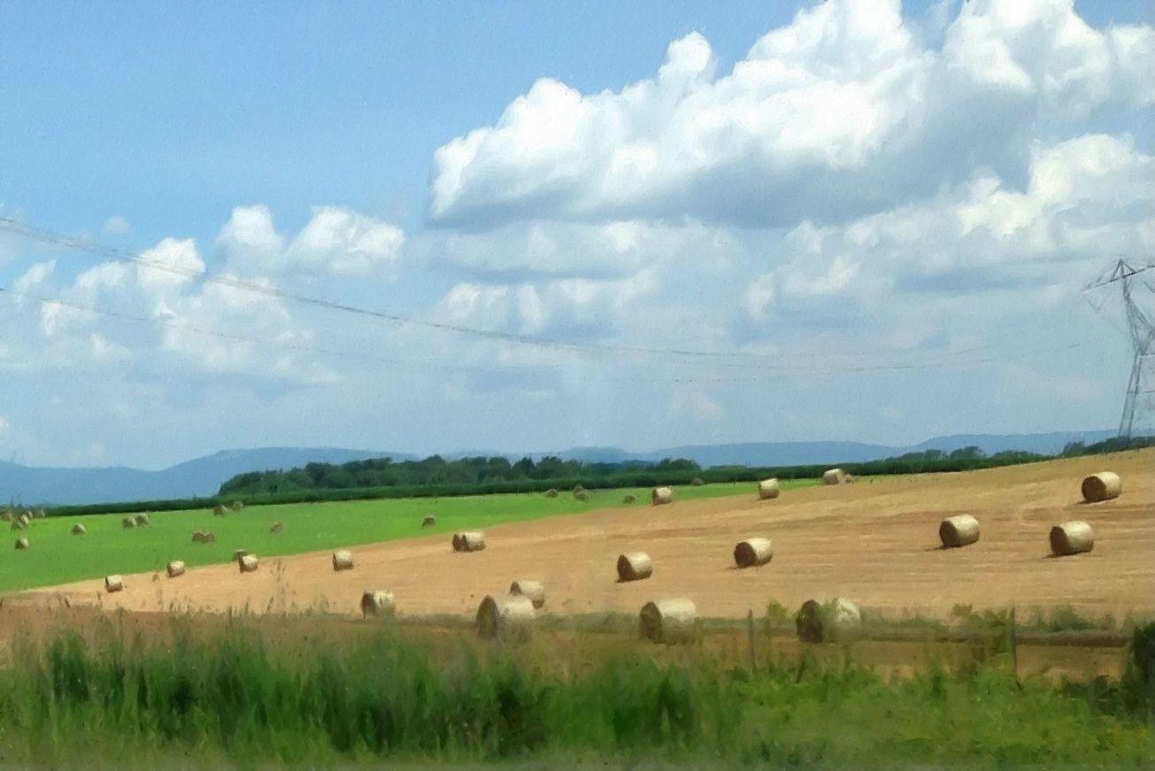 Sketched hay bales field crop ret 2 gall