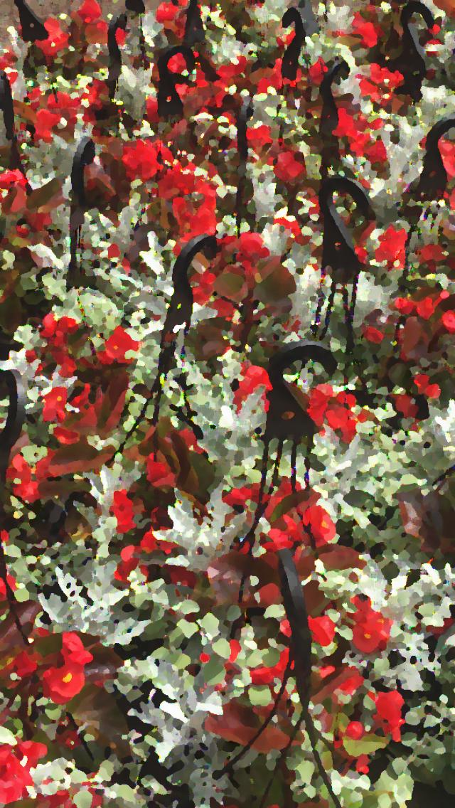 IMG_1029 hanging begonia baskets gall